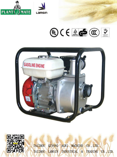 Agricultural/Industrial Water Pump with ISO9001 (WP-20)