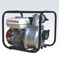 Gasoline Power Sprayer/Gas Engine Water Pump (WP-30)